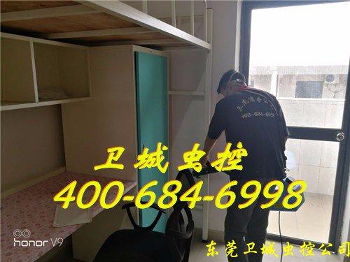 惠州除四害杀虫公司,惠城白蚁公司
