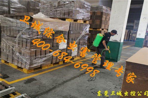 广州南沙白蚁防治公司,番禺白蚁防治所专业灭杀白蚁效果显著!