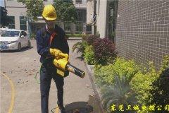 蚊虫的防治方法-东莞谢岗专业杀虫公司