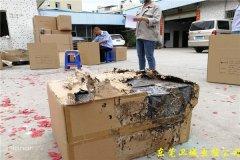 深圳沙井白蚁防中心,沙井防治白蚁,沙井灭白蚁,沙井白蚁公司